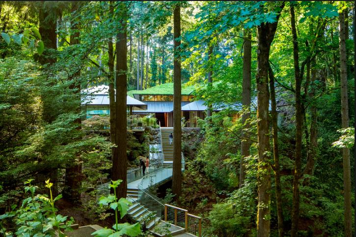 portland-japanese-garden-oregon-green-eco-culture-art