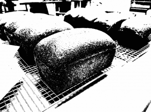 [Grainy black and white] loaves of bread on cooling racks.