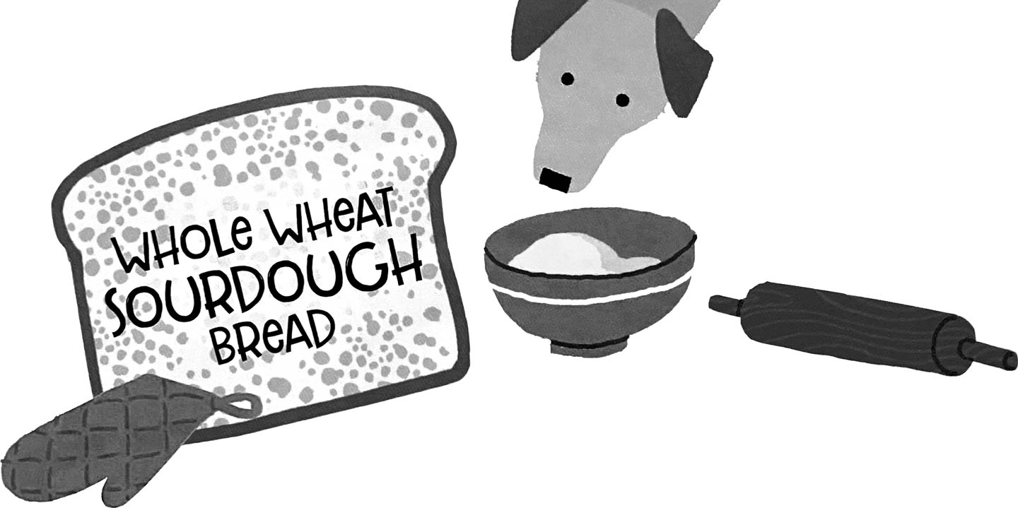 "(Illustration) Dog peers into mixing bowl; oversized slice of bread ""Whole Wheat Sourdough Bread"""