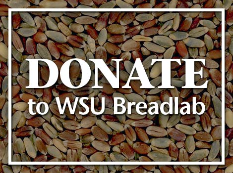 Donate to WSU Breadlab
