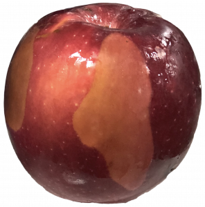 Postharvest apple showing a brown irregular shaped region with a distinct margin; a second similar region seen to the left.