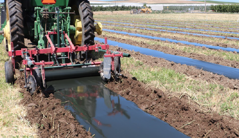 tractor with spool attachment laying down film in rows.