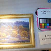Autumn Trees Landscape