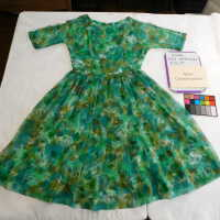 Ricci Chiffon Dress picture number 74