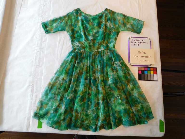 Ricci Chiffon Dress picture number 1