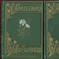 Familiar Wild Flowers Figured and Described / F. Edward Hulme picture number 2
