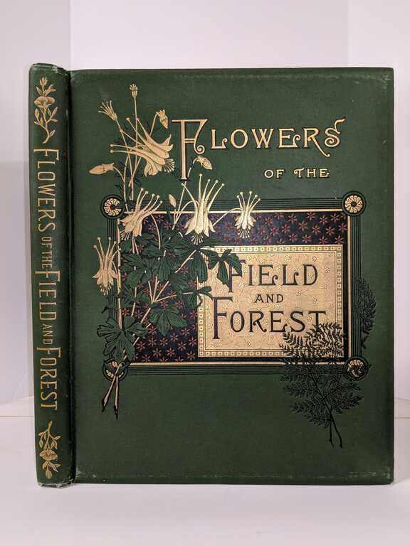 Flowers of the Field and Forest From Original Water-Color Drawings After Nature by Isaac Sprague / Reverend A.B. Hervey picture number 1