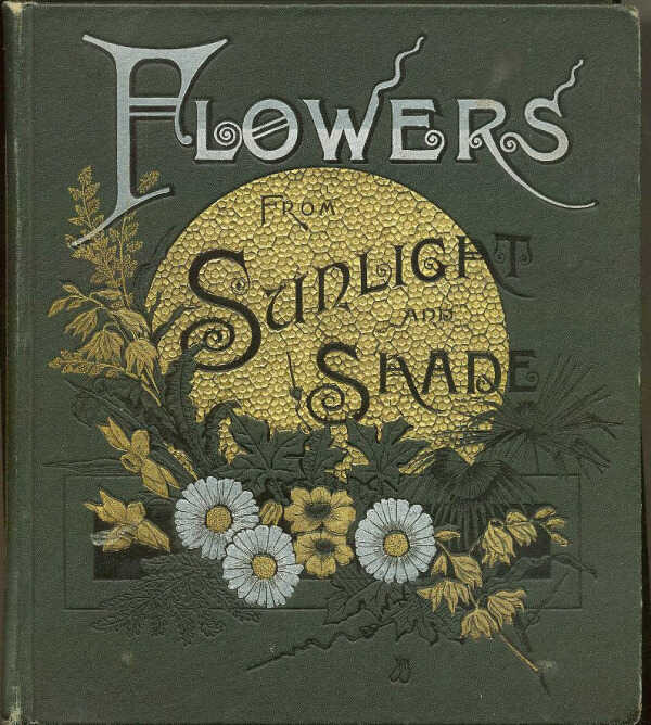 Flowers From Sunlight and Shade: Poems / S.B. Skelding picture number 1
