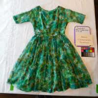 Ricci Chiffon Dress