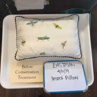 Insect Pillow