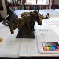 Bronze Mooses