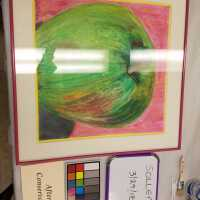 Sollers Apple Oil Pastel