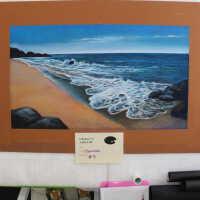 Seashore picture number 6