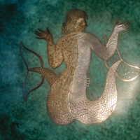 Mermaid Bowl picture number 51