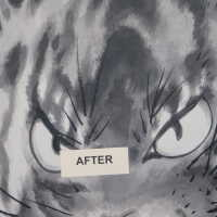 Japanese Tiger Ink Painting on screen picture number 250
