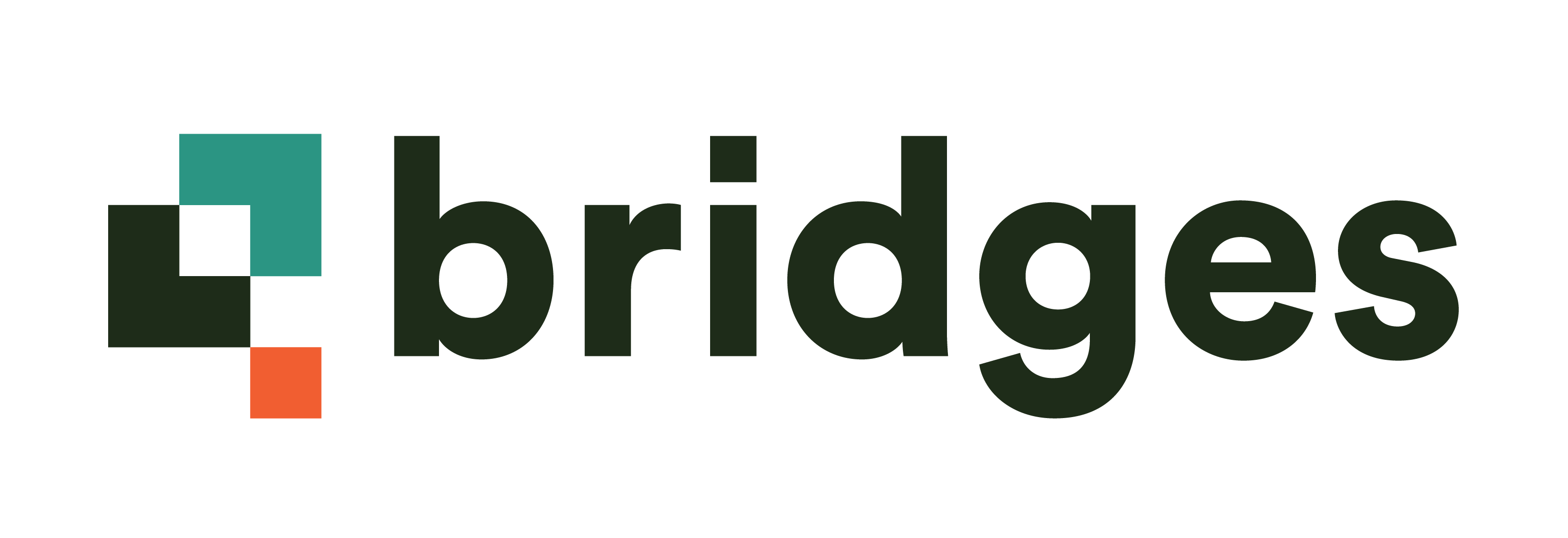 Bridges dark logo sized