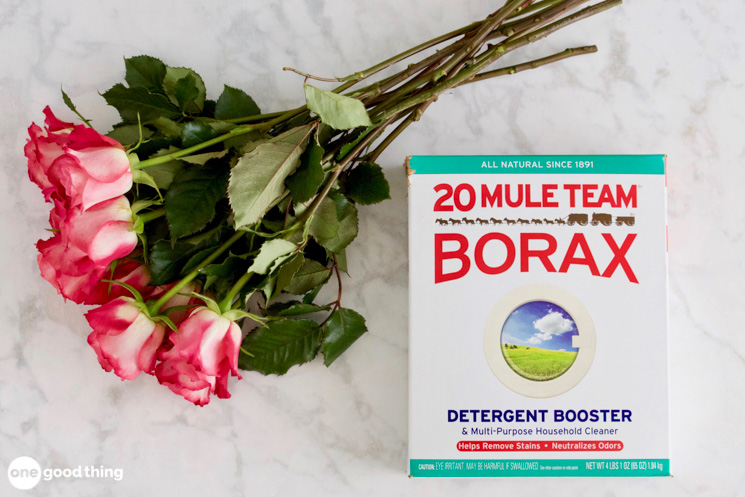 Eight pink and white roses alongside a 65 ounce box of 20 Mule Team Borax