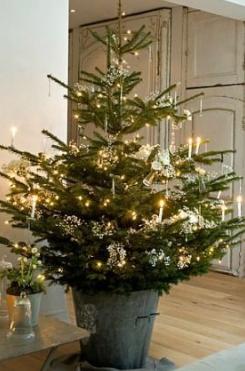 conscious-holiday-tree