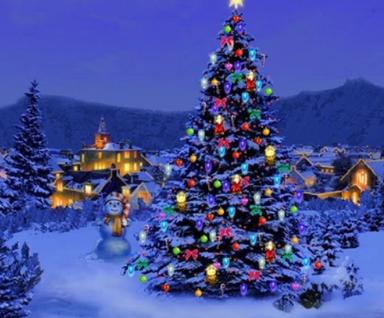 sustainable-holiday-tree
