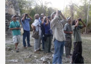 group-of-tourists-with-binoculars-birdwatching
