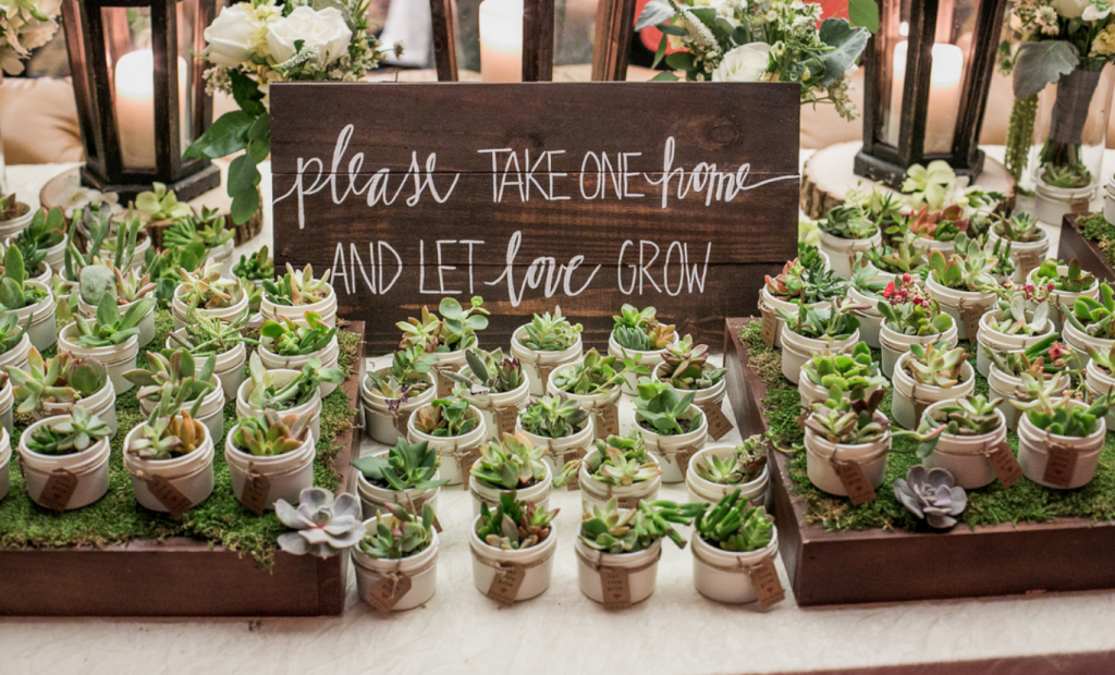 eco-wedding-favors