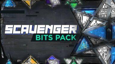 scavenger bits pack