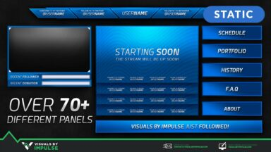 Surfer Stream Package - Visuals by Impulse