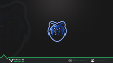 Ted Bear Mascot Logo - Visuals by Impulse