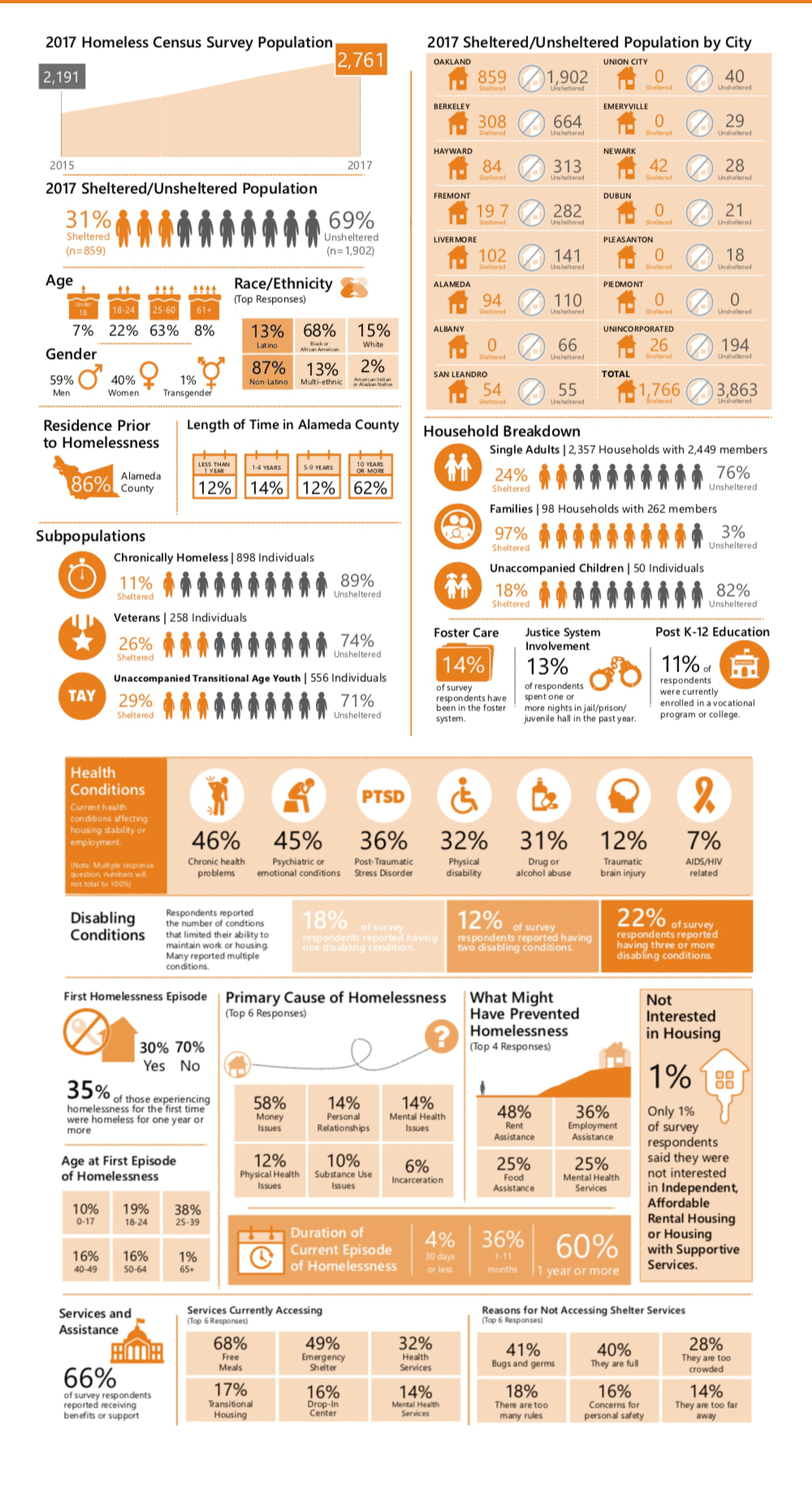 2017 Homeless Census Survey results infographic