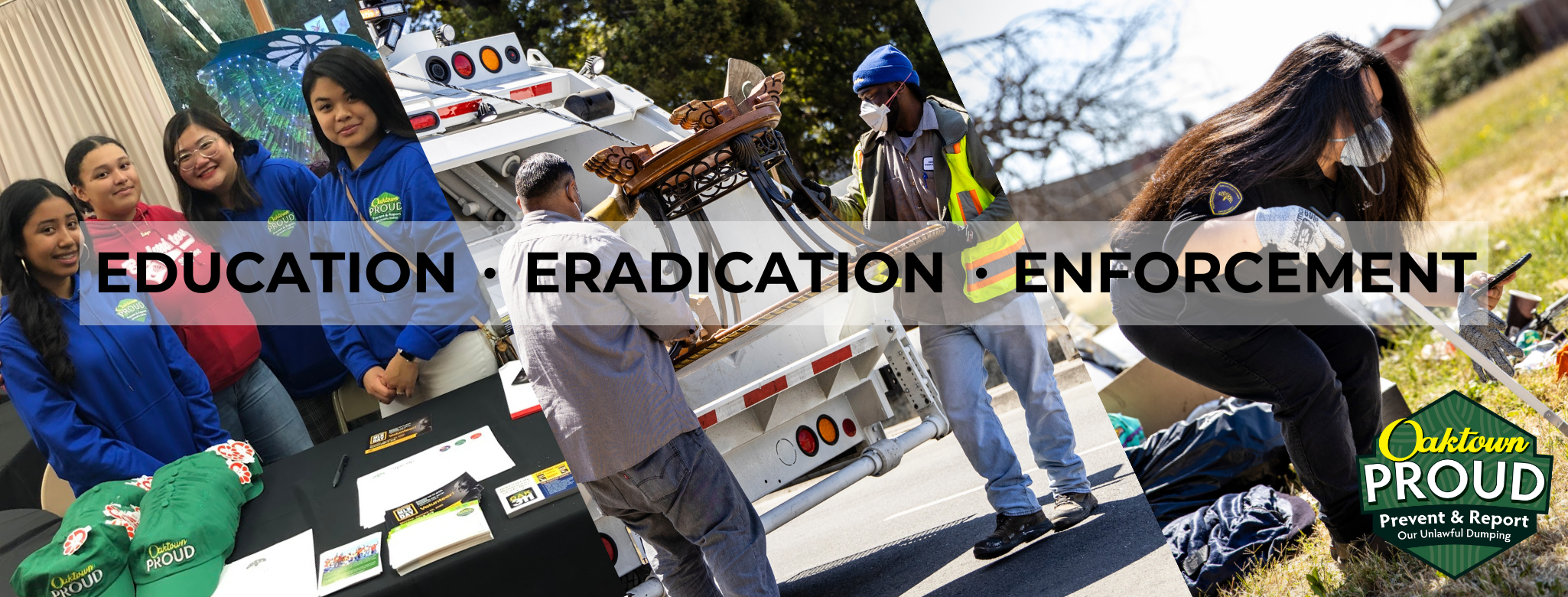 The Three E's: Education, Eradication, Enforcement