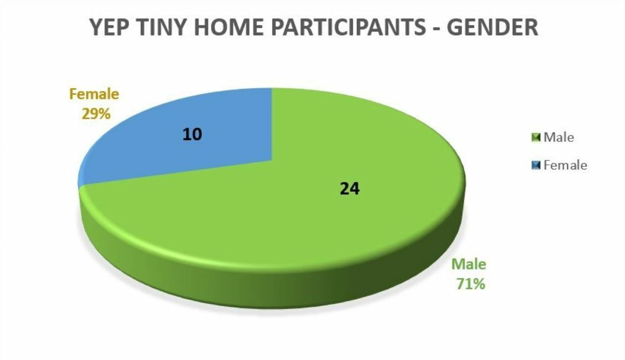 Pie chart representing YEP tiny home participants by gender