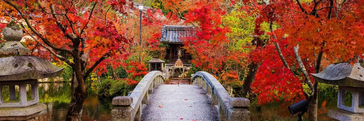 39. Kioto