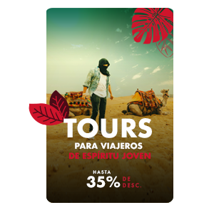 TOURS_TRAVELERS