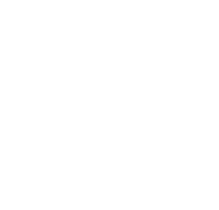 Logo Ixtapa Zihuatanejo1x1