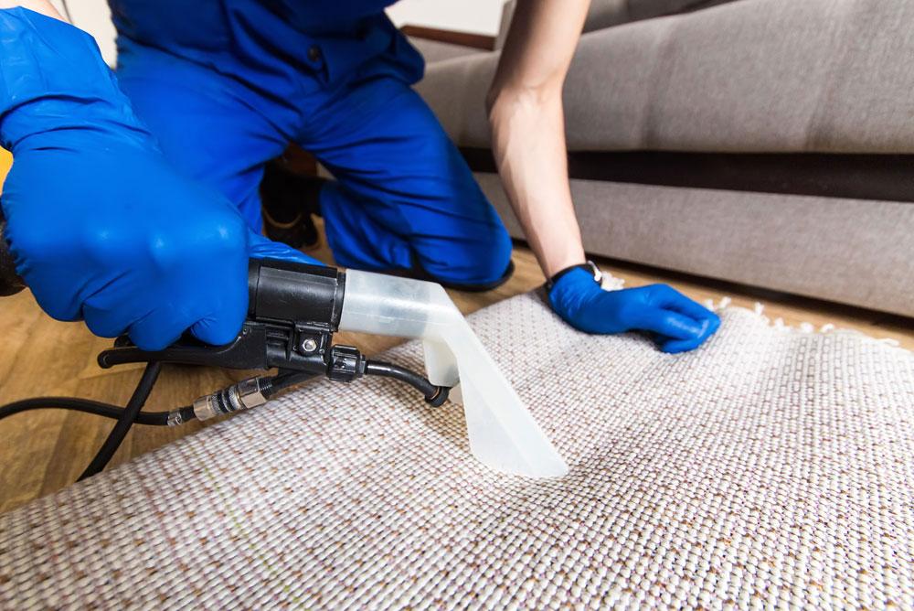trauma or crime scene cleanup service