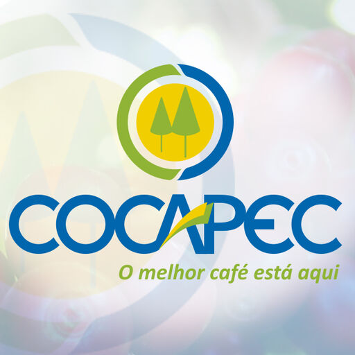 @Cocapec Profile Picture