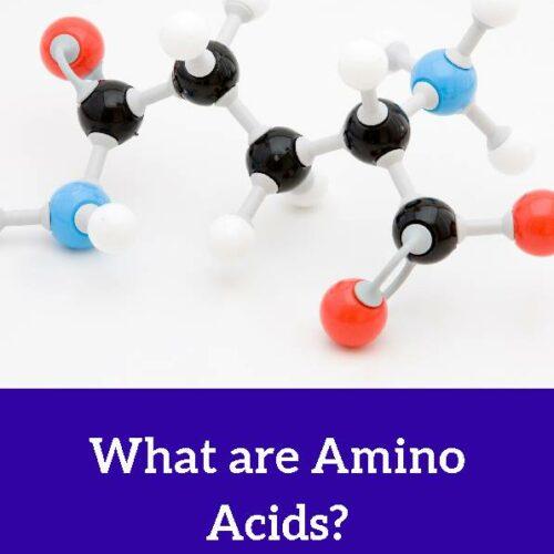 Amino Acid, Reading Passage