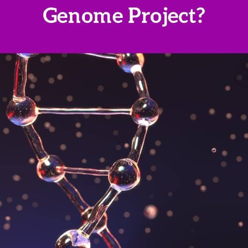 Human Genome Project, Reading Passage