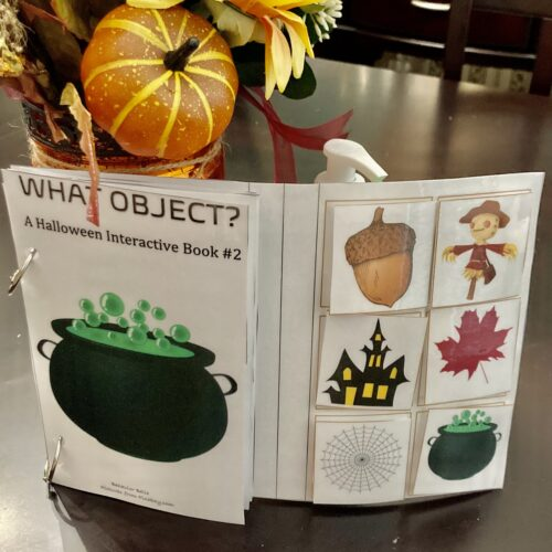 WH QUESTIONS Halloween Edition (WHAT Object?) Adapted Book (WHAT QUESTIONS)