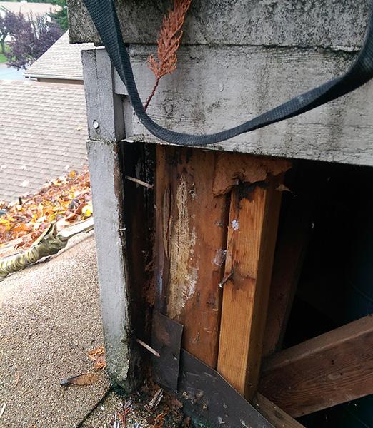 Leak Detection & Repairs -