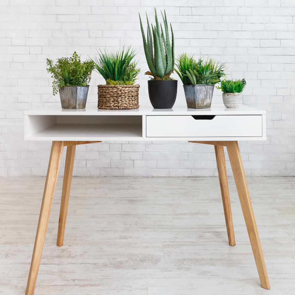 houseplants-in-various-pots-on-table-against-wall-WQ4GACX.jpg