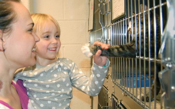 Animal Services   Cobb County Georgia