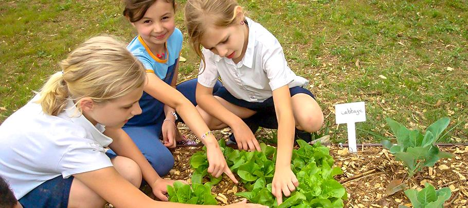 Kids planting vegetables