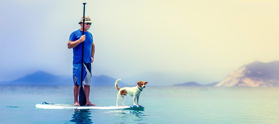 Elderly man paddle boarding with dog