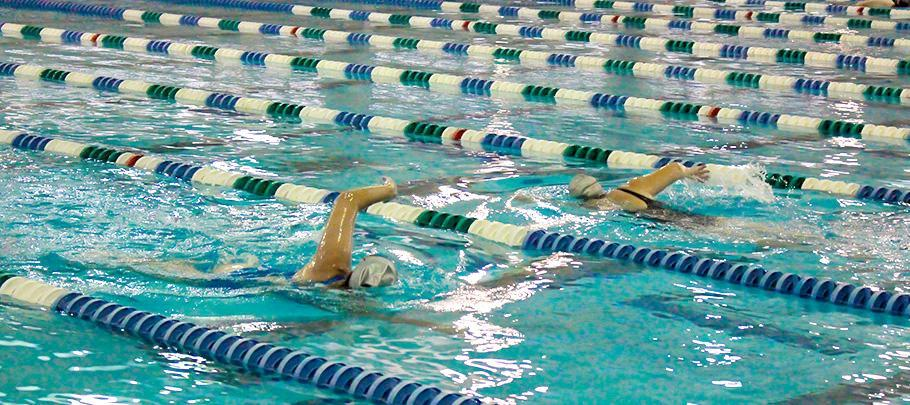 Lane Swimmers