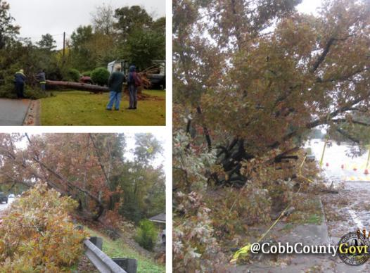Storm Cleanup