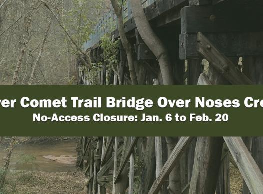 Picture of Silver Comet Bridge over Noses Creek