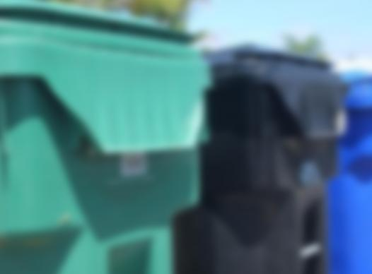 picture of trash bins