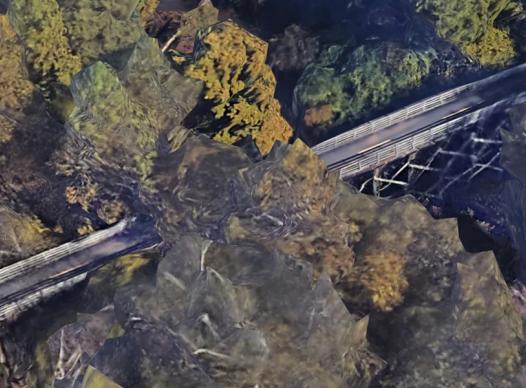 picture of silver comet trail bridge