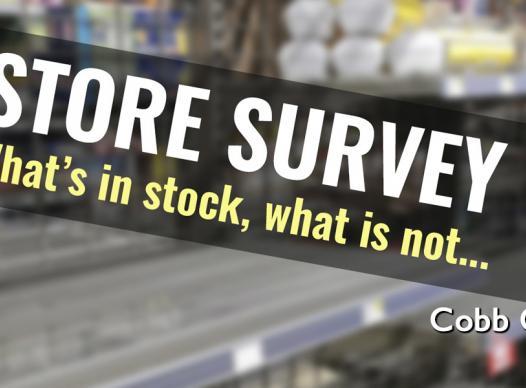 Store Survey